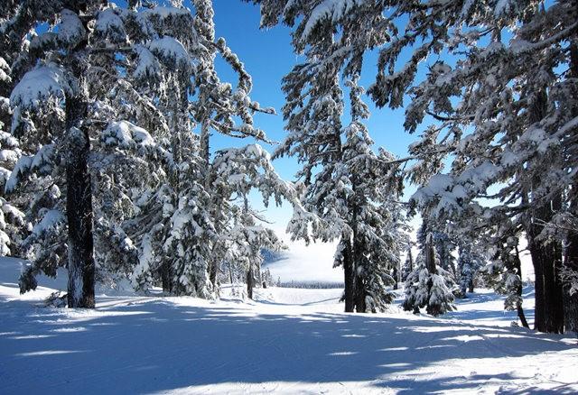 冬在胡德山_图1-16