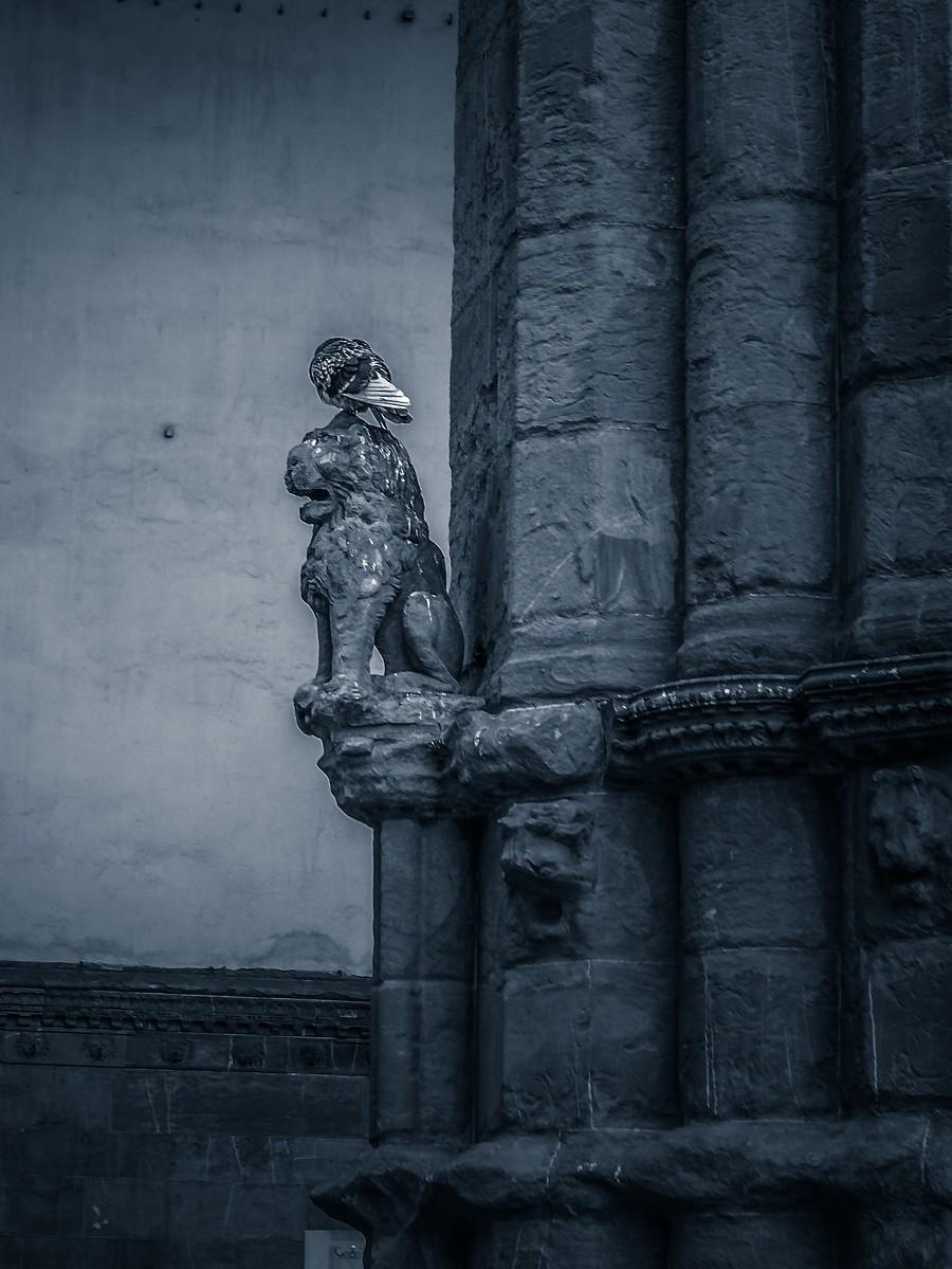 意大利佛罗伦萨,西格诺里亚广场的雕像_图1-7