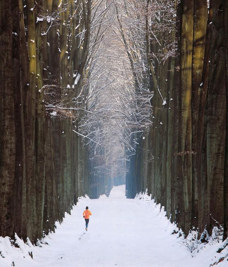 雪域景观_图1-12