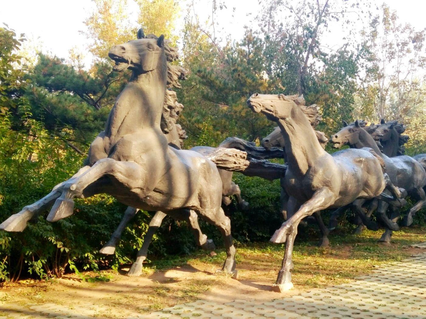 言日:清秋印象——北京国际雕塑公园_图1-5