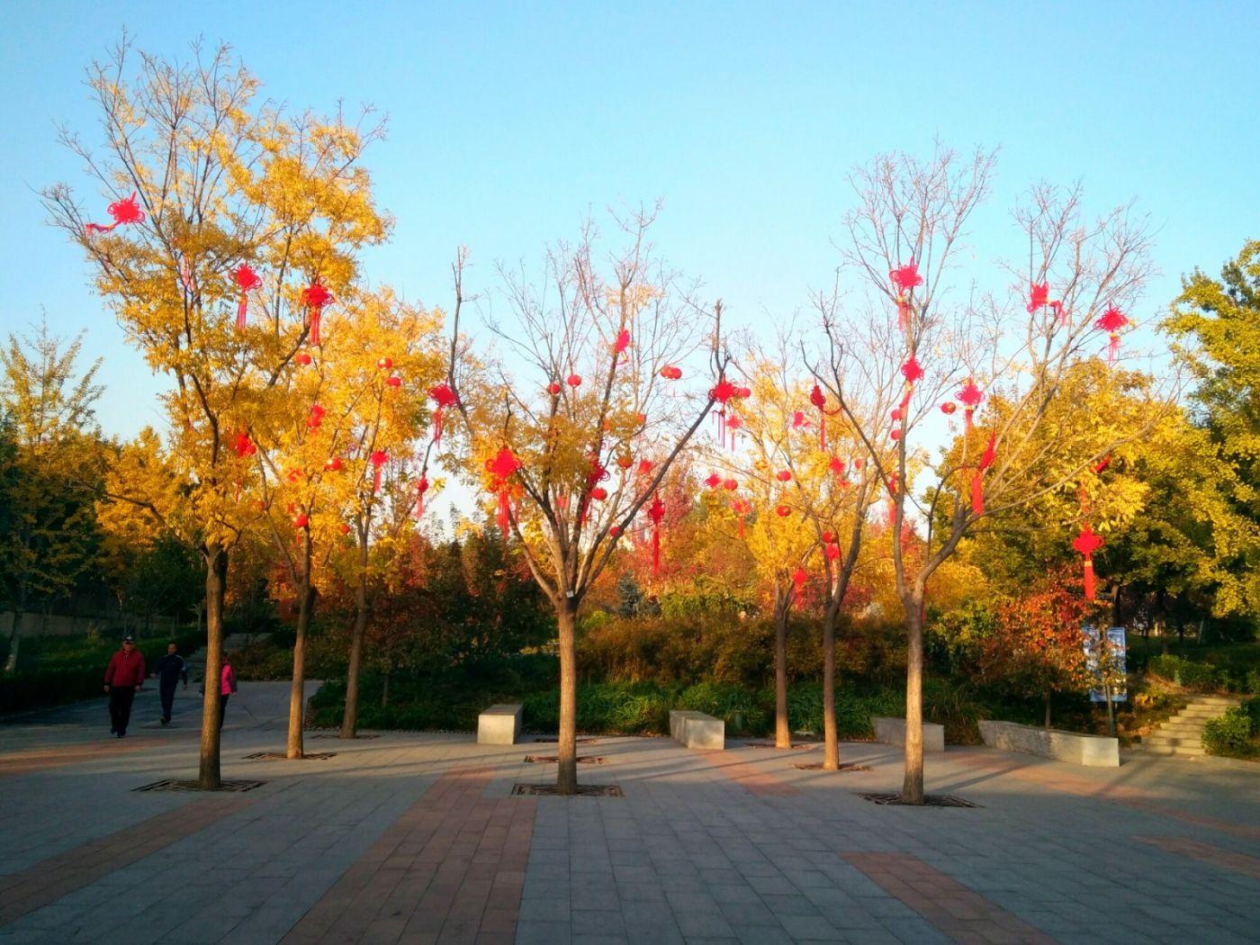 言日:清秋印象——北京国际雕塑公园_图1-17
