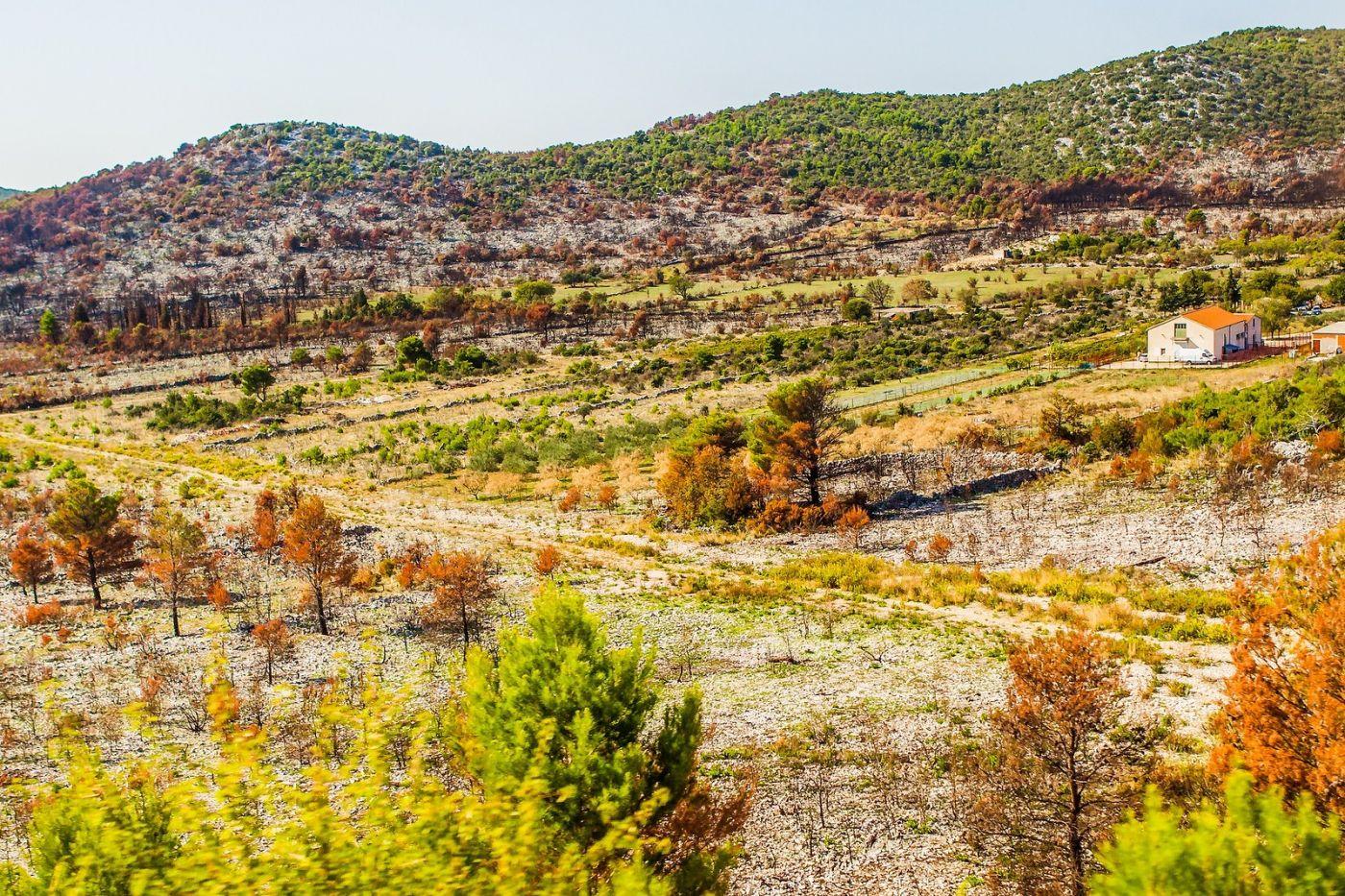 克罗地亚旅途,沿路的秋色_图1-15