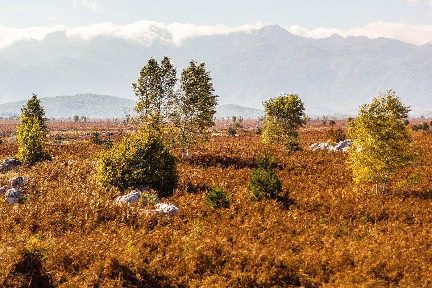 克罗地亚旅途,沿路的秋色_图1-6