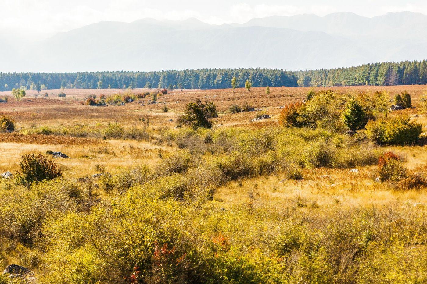克罗地亚旅途,沿路的秋色_图1-21