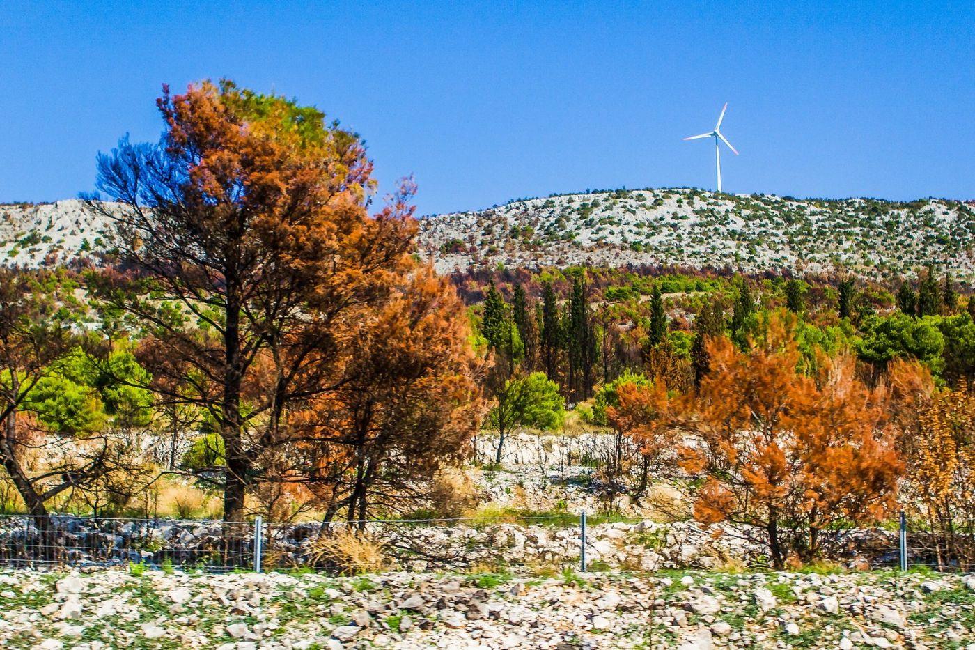 克罗地亚旅途,沿路的秋色_图1-23