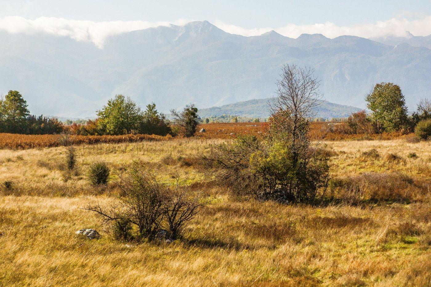 克罗地亚旅途,沿路的秋色_图1-27
