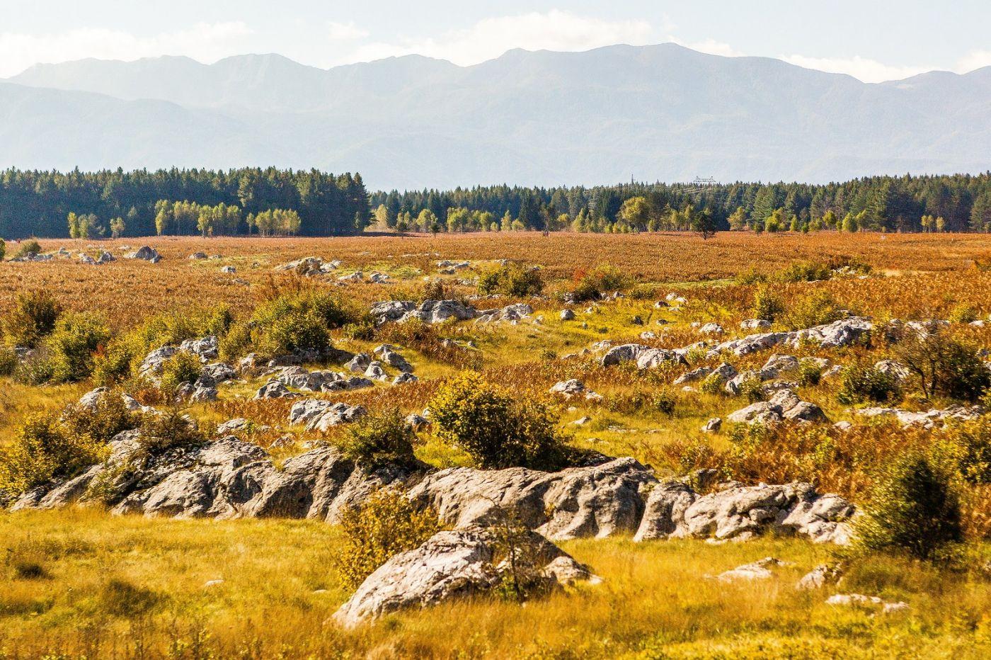 克罗地亚旅途,沿路的秋色_图1-29