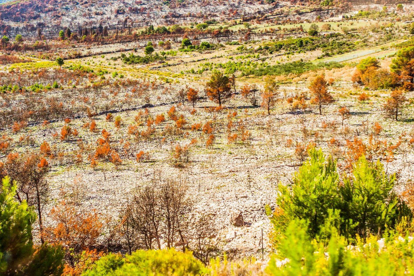 克罗地亚旅途,沿路的秋色_图1-31