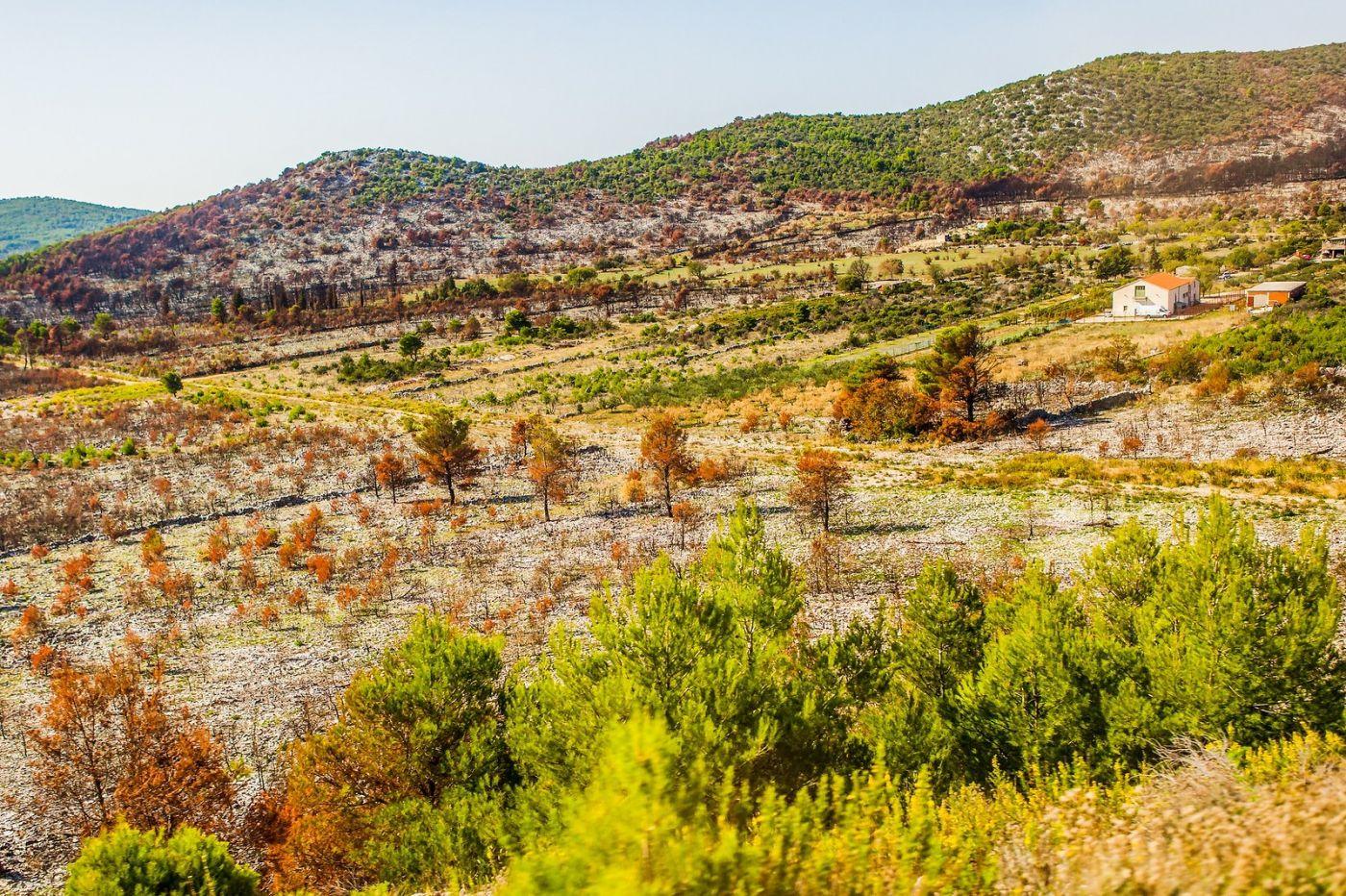 克罗地亚旅途,沿路的秋色_图1-36