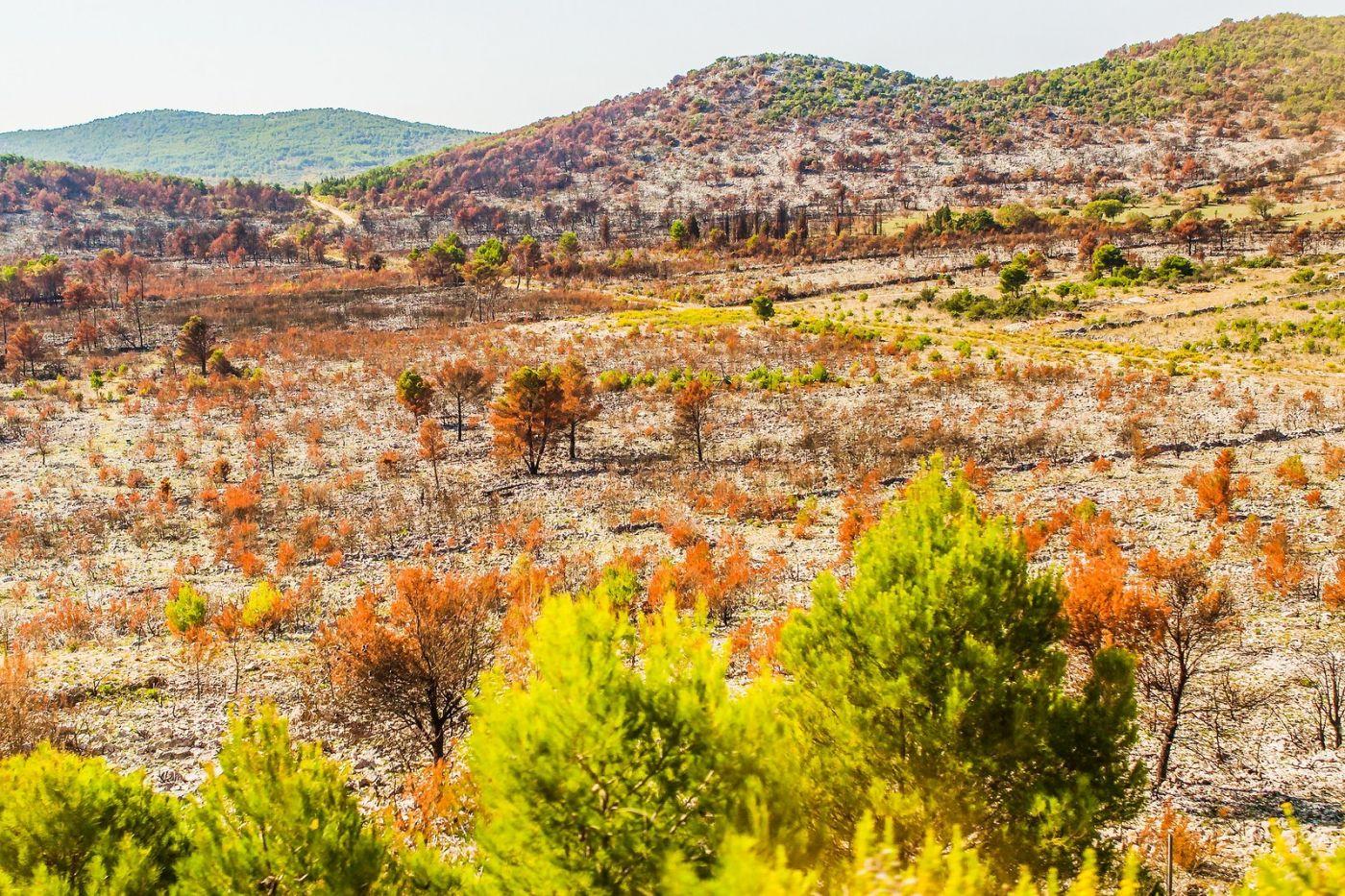 克罗地亚旅途,沿路的秋色_图1-34