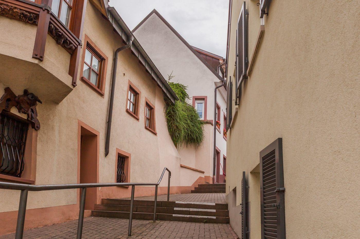 德国布赖萨赫(Breisach),小城故事_图1-18