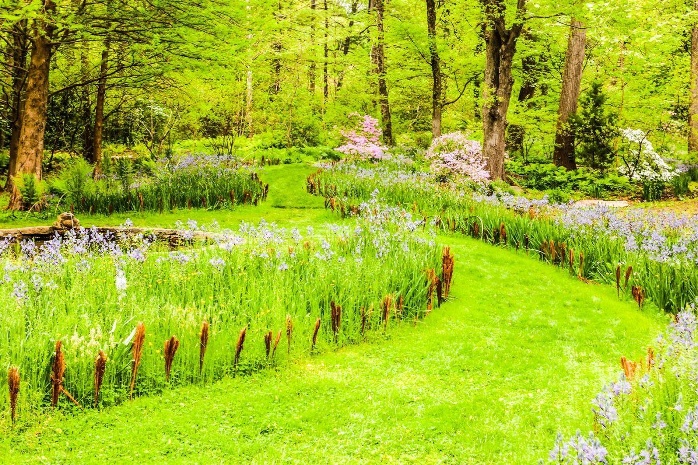 Chanticleer花园,相会在明年_图1-12