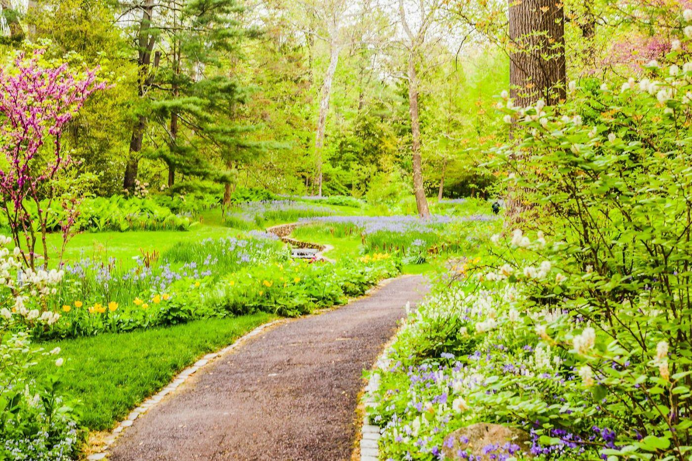 Chanticleer花园,相会在明年_图1-10