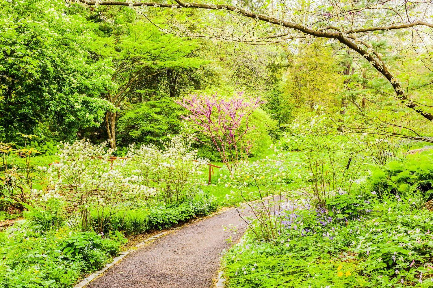 Chanticleer花园,相会在明年_图1-6