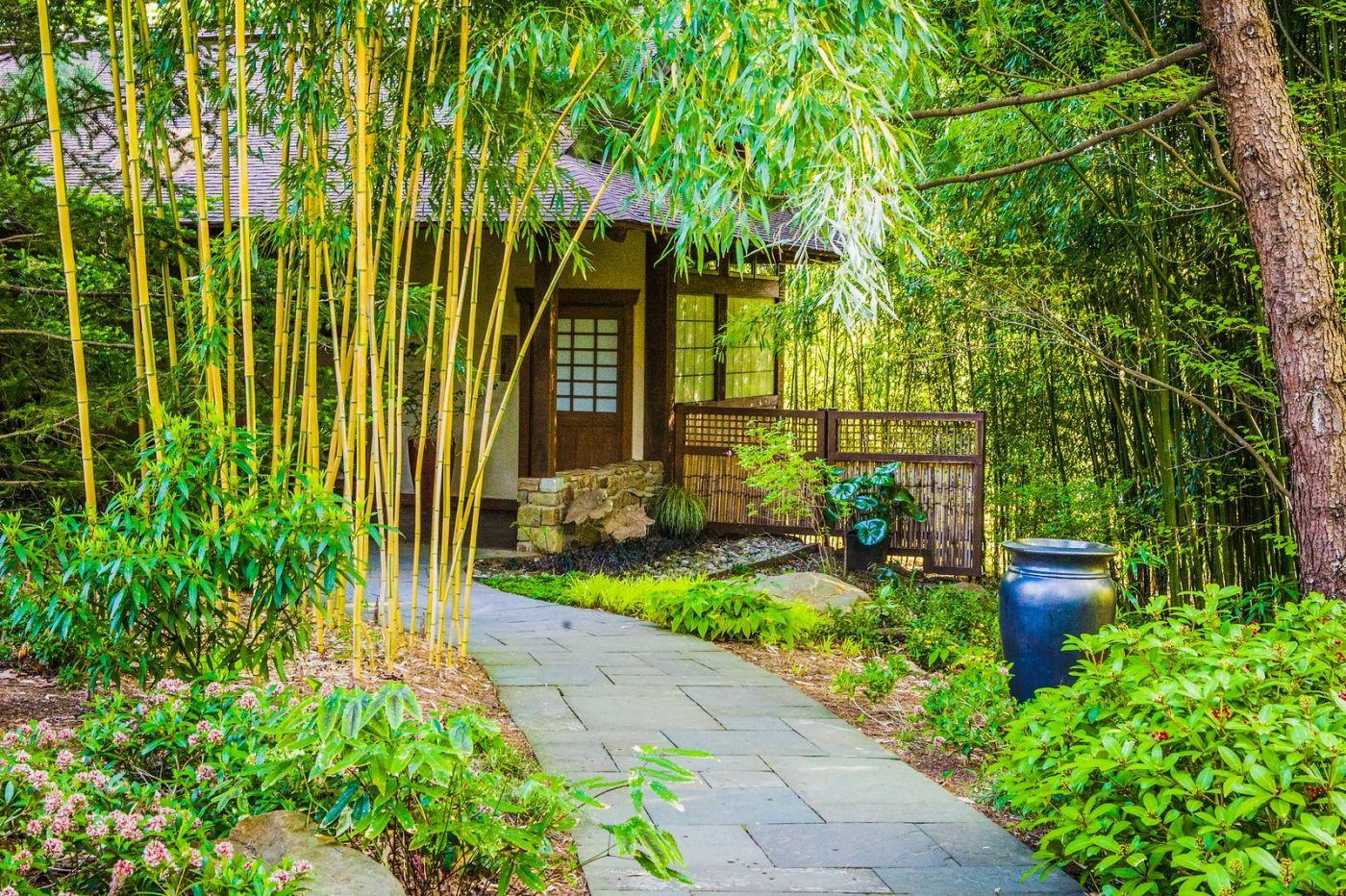 Chanticleer花园,相会在明年_图1-8