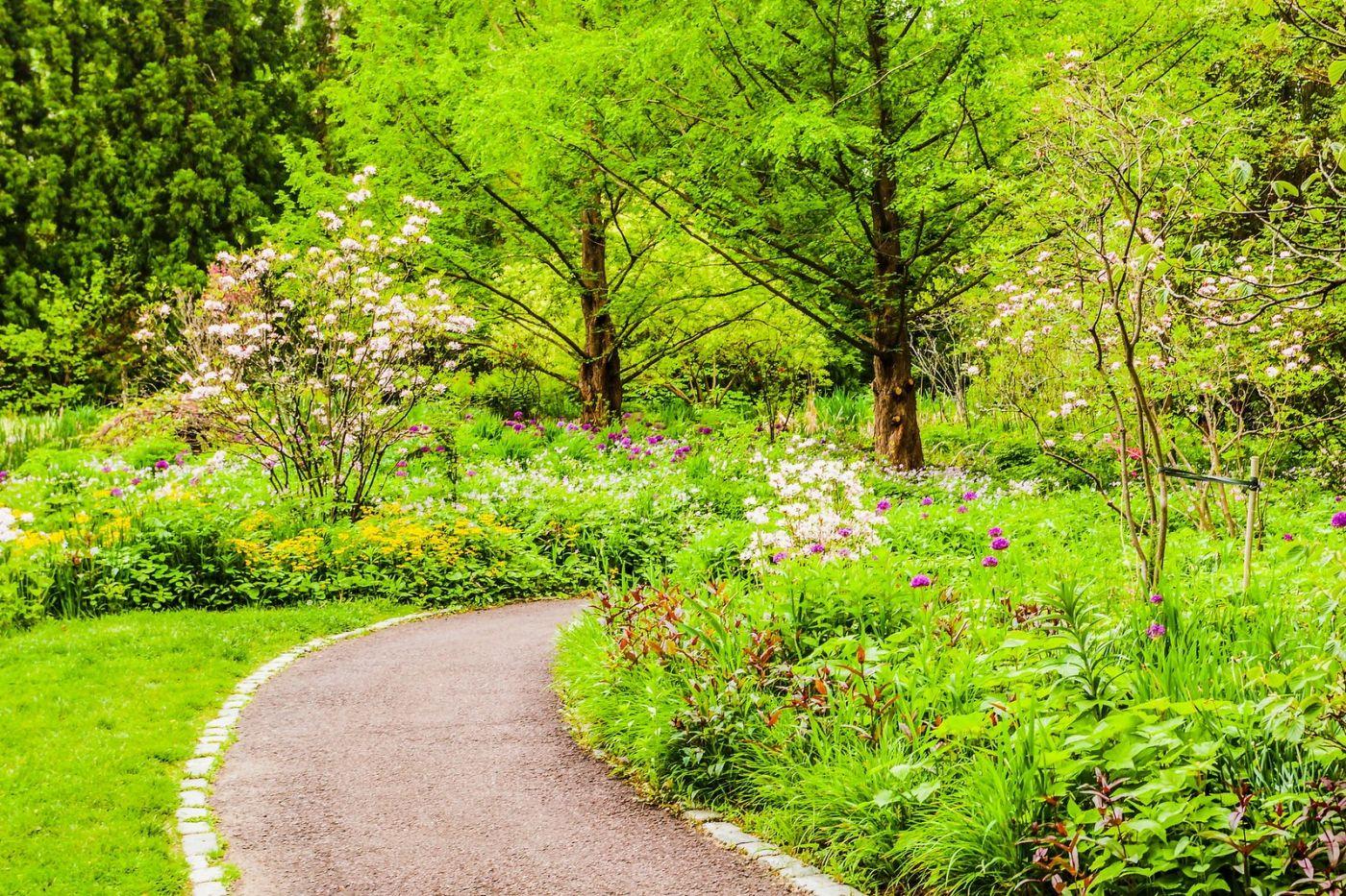 Chanticleer花园,相会在明年_图1-13