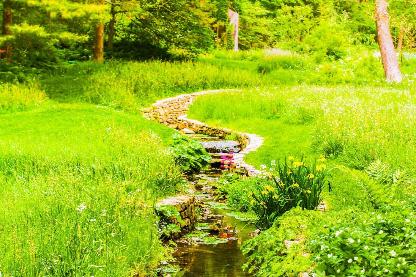 Chanticleer花园,相会在明年_图1-14