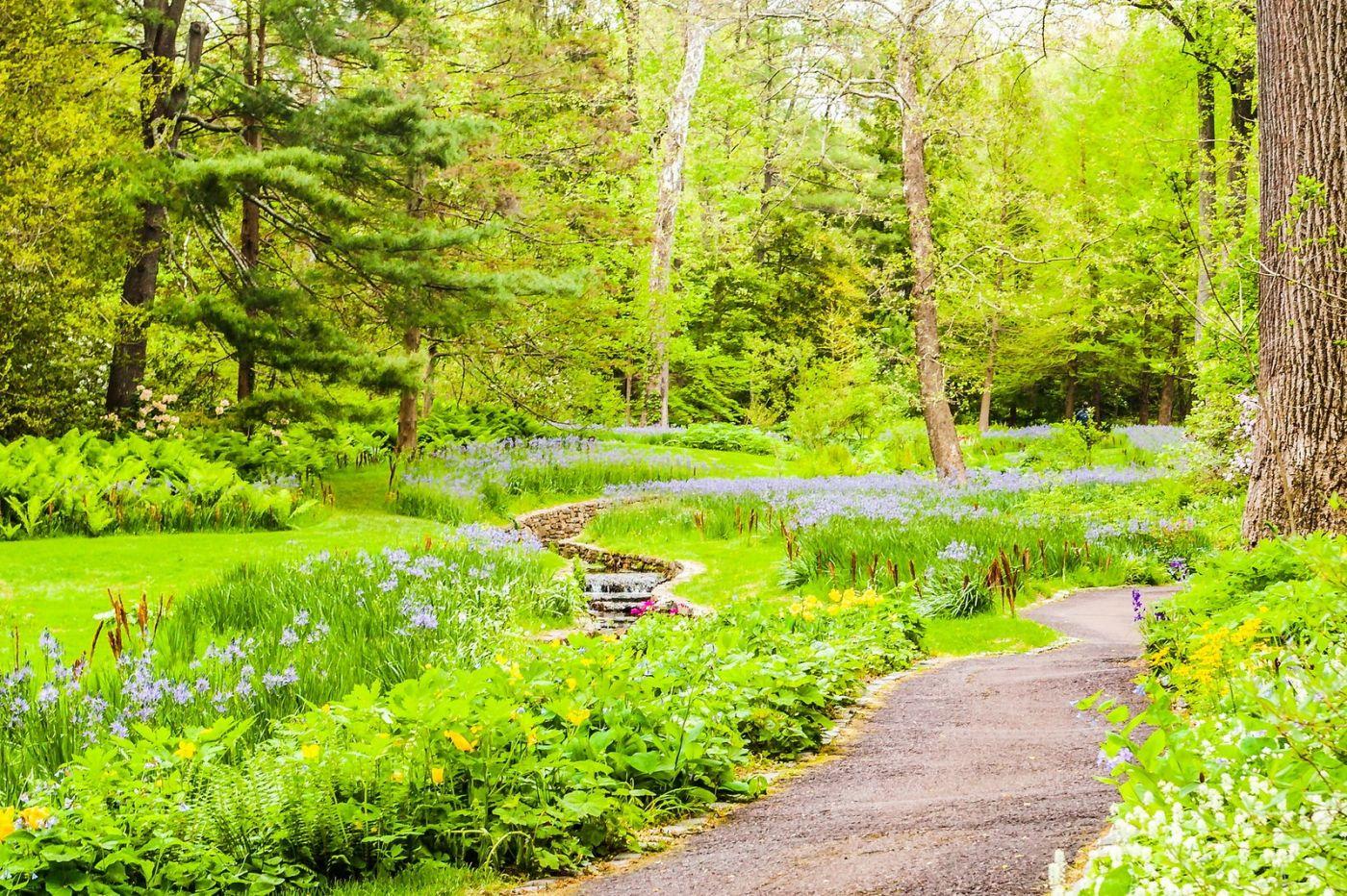 Chanticleer花园,相会在明年_图1-20