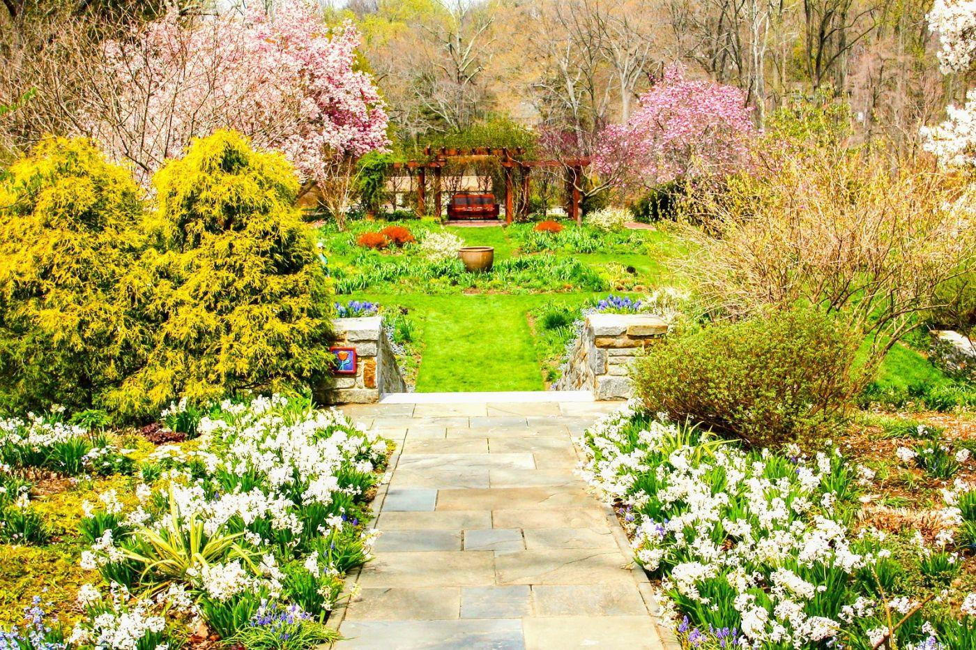 Chanticleer花园,相会在明年_图1-18
