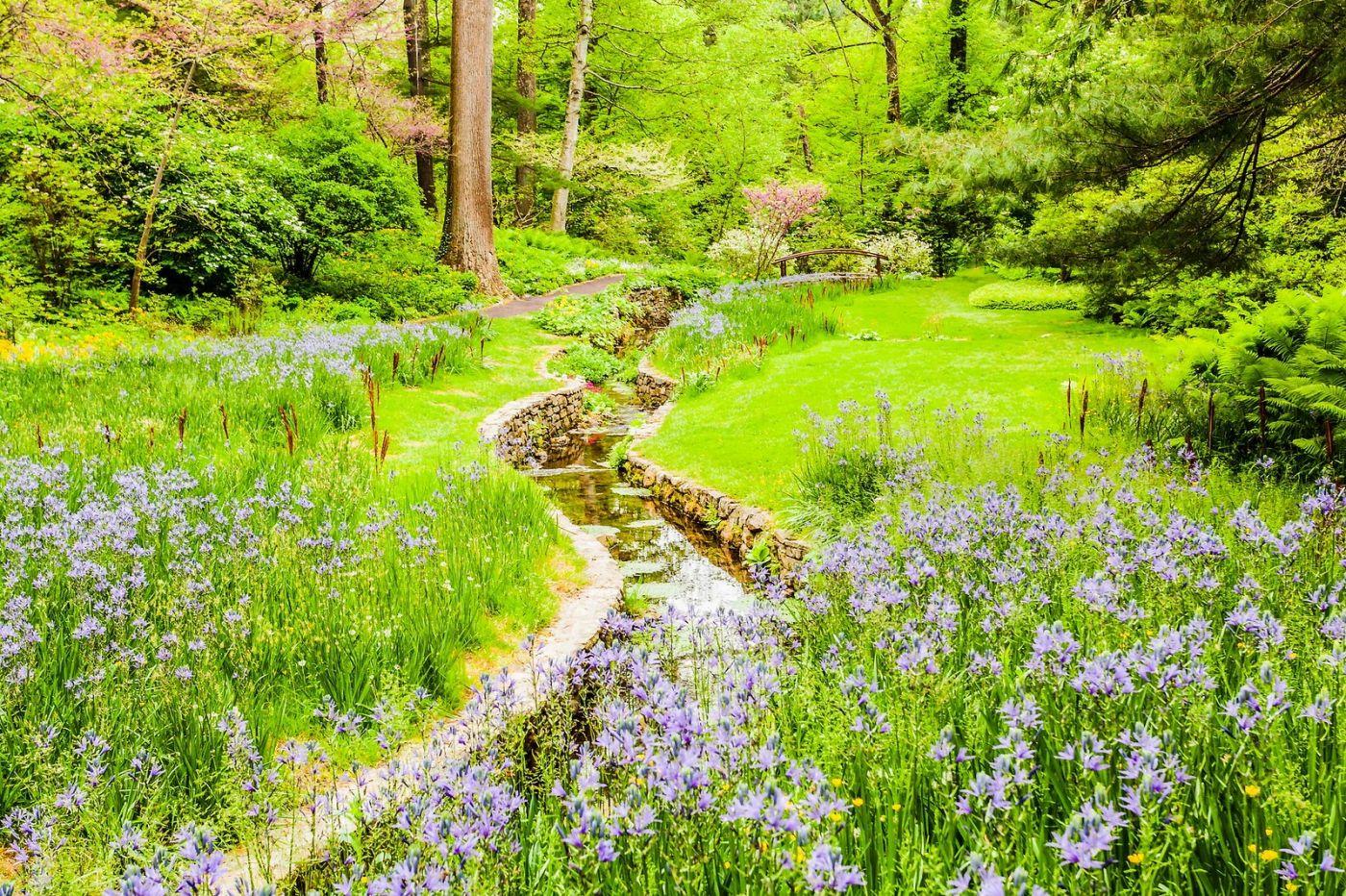 Chanticleer花园,相会在明年_图1-21