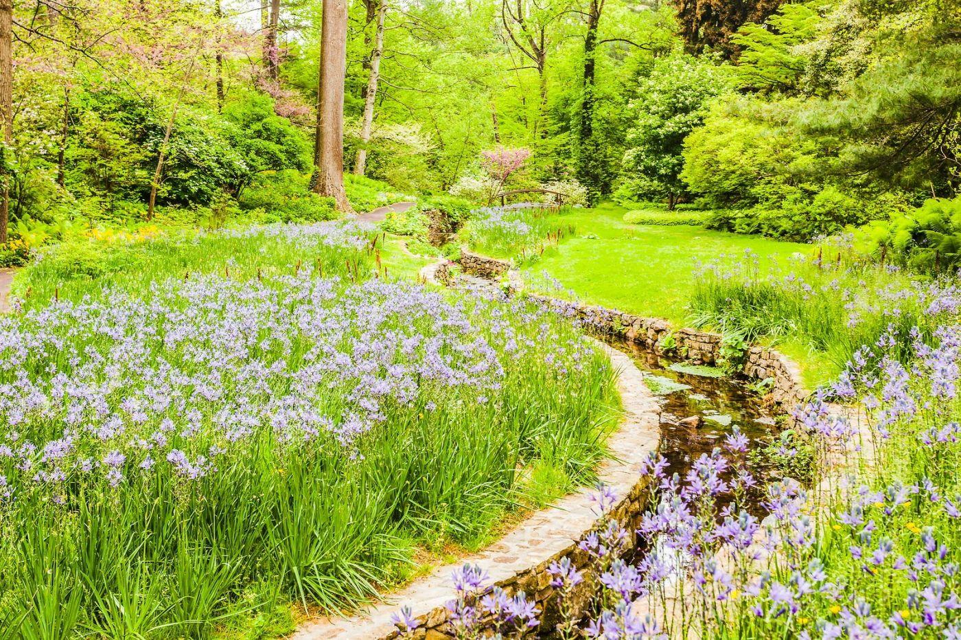 Chanticleer花园,相会在明年_图1-22