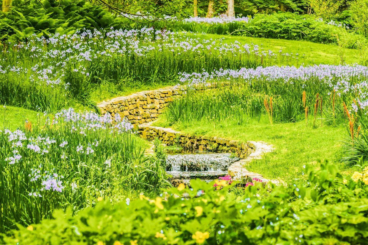 Chanticleer花园,相会在明年_图1-27