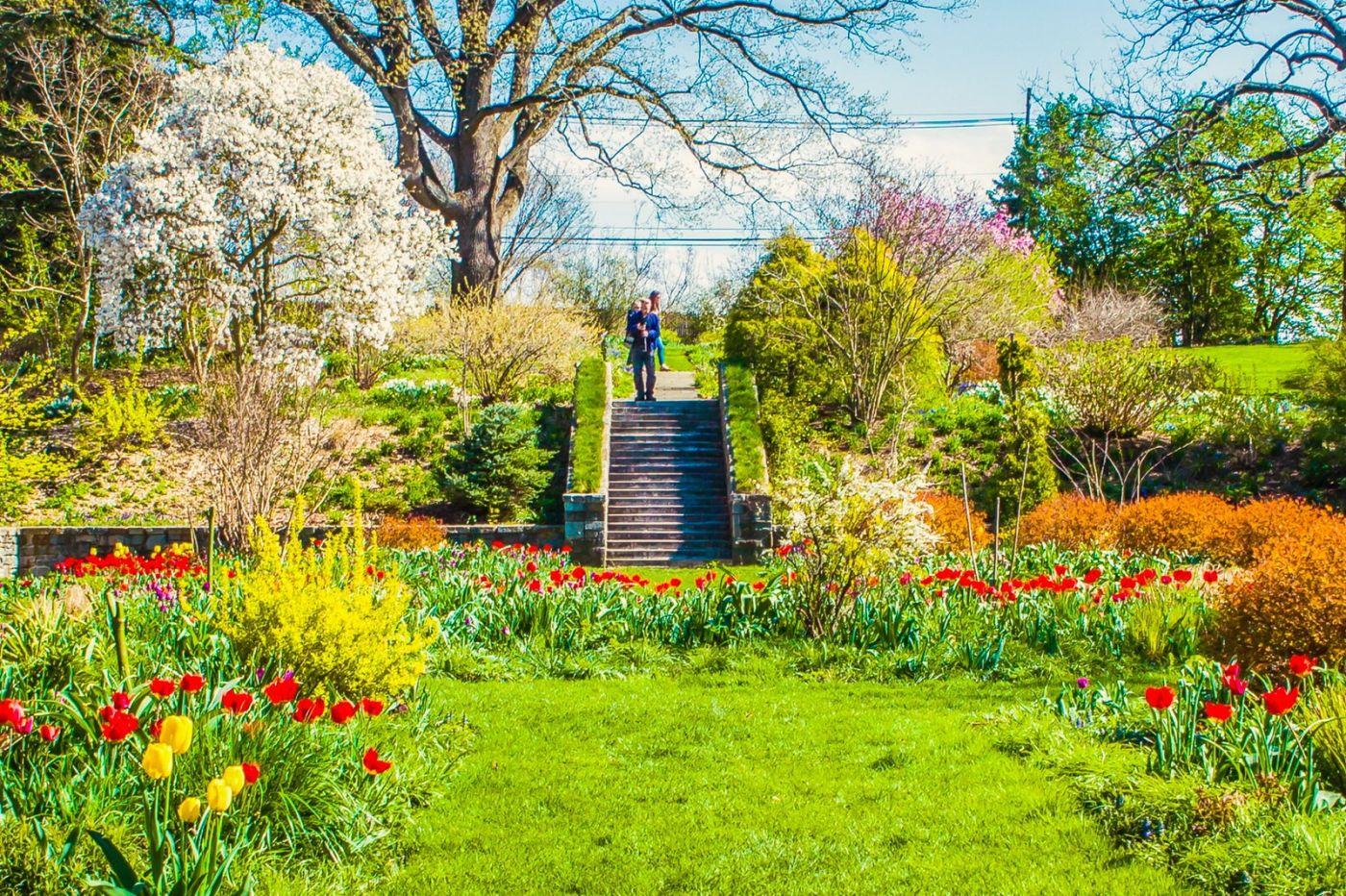 Chanticleer花园,相会在明年_图1-26