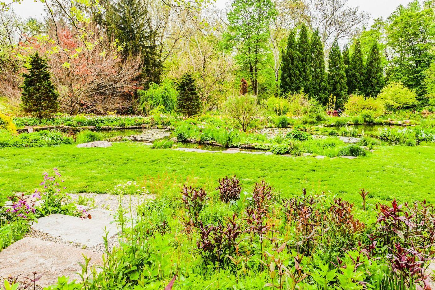 Chanticleer花园,相会在明年_图1-29