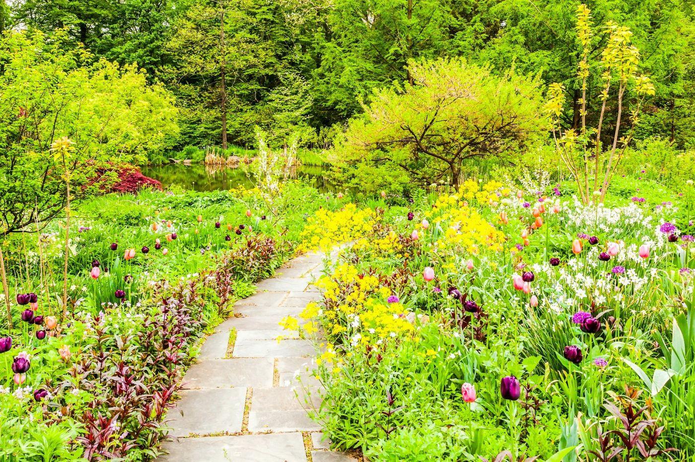 Chanticleer花园,相会在明年_图1-30