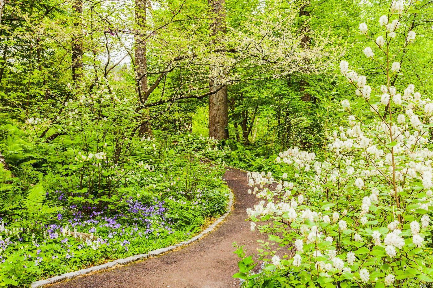 Chanticleer花园,相会在明年_图1-31