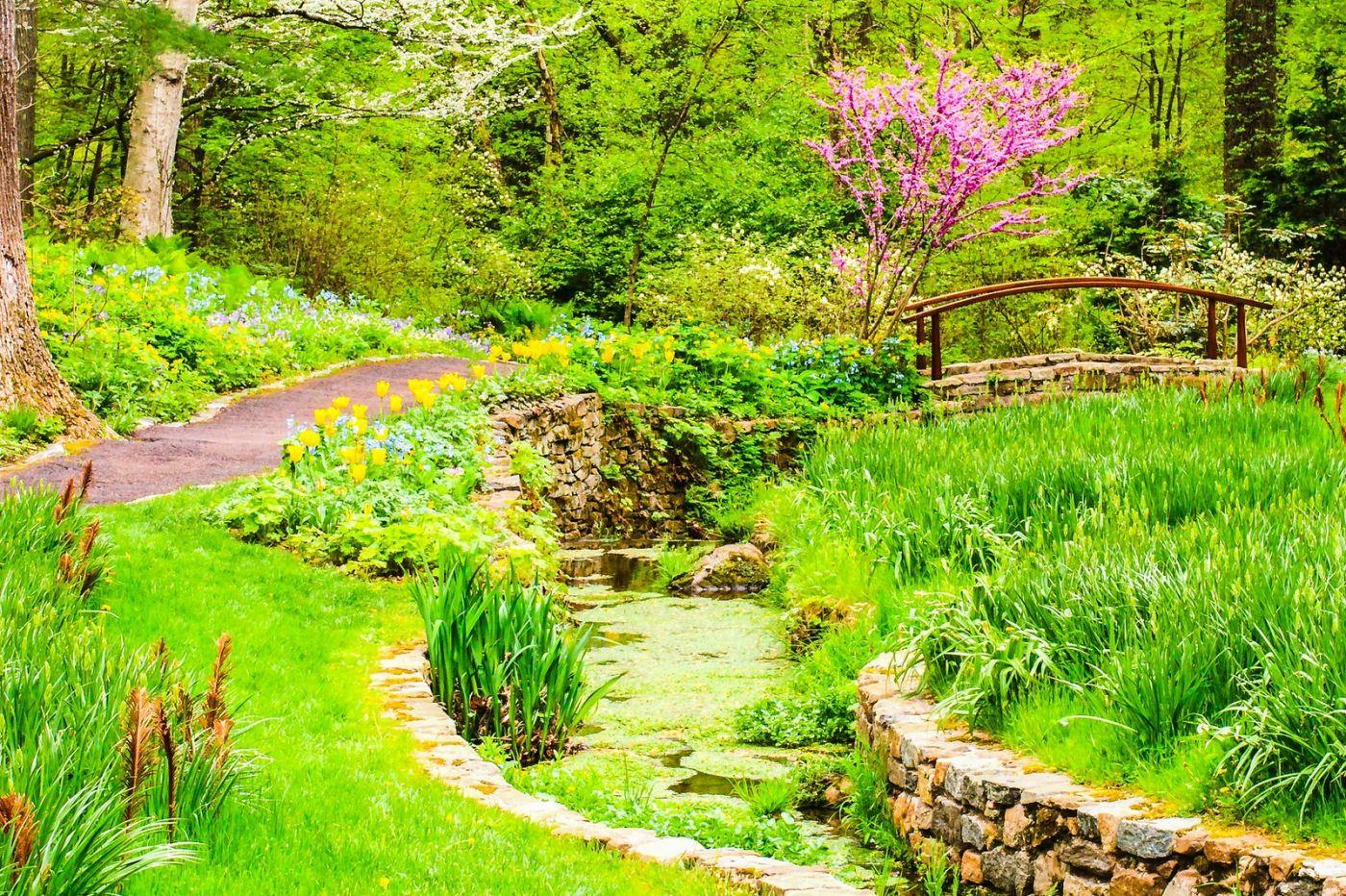 Chanticleer花园,相会在明年_图1-36