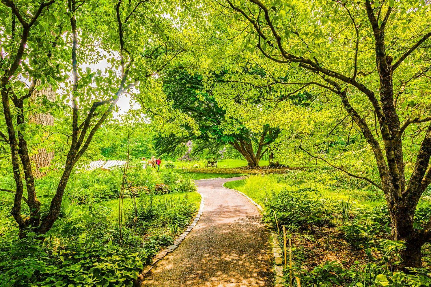 Chanticleer花园,相会在明年_图1-34