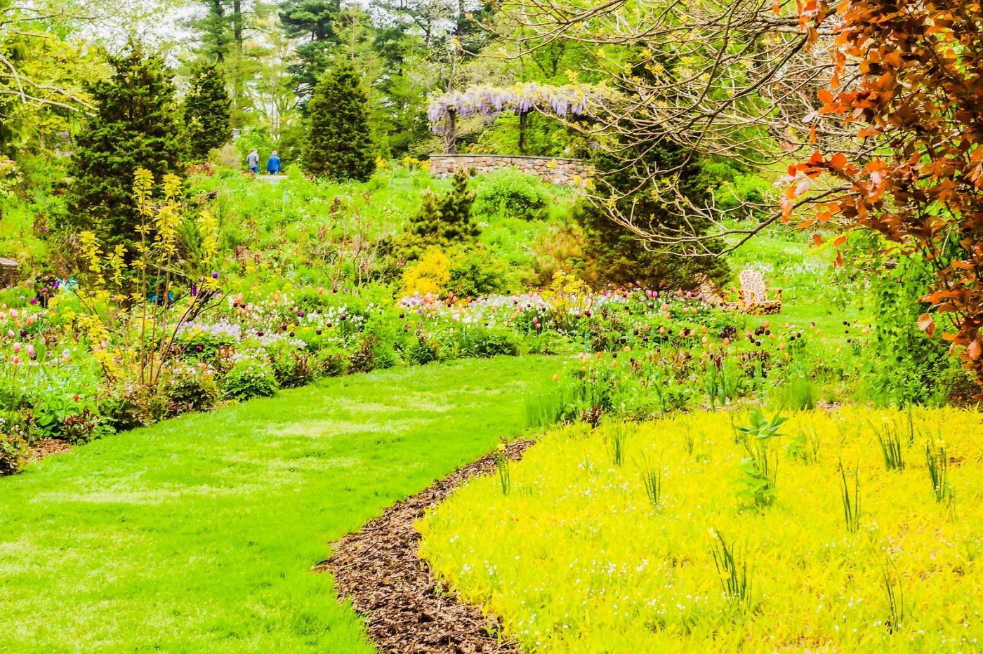 Chanticleer花园,相会在明年_图1-39