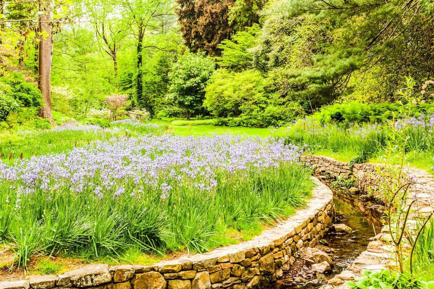Chanticleer花园,相会在明年_图1-40