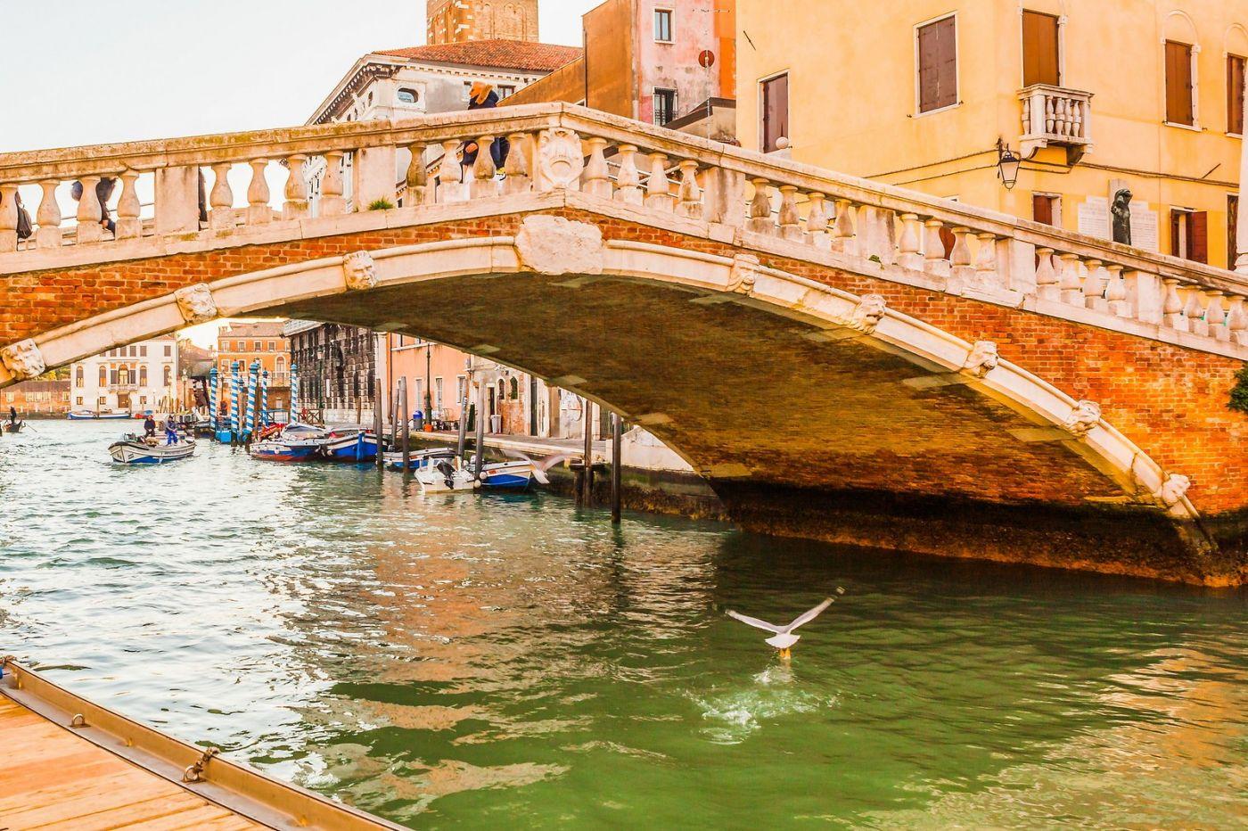 意大利威尼斯,桥的艺术_图1-16