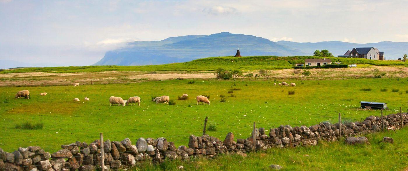 苏格兰见闻,原生态_图1-31