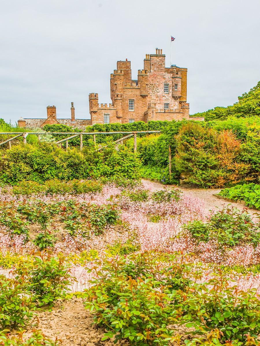 苏格兰梅城堡(Castle of Mey),花园散步_图1-3