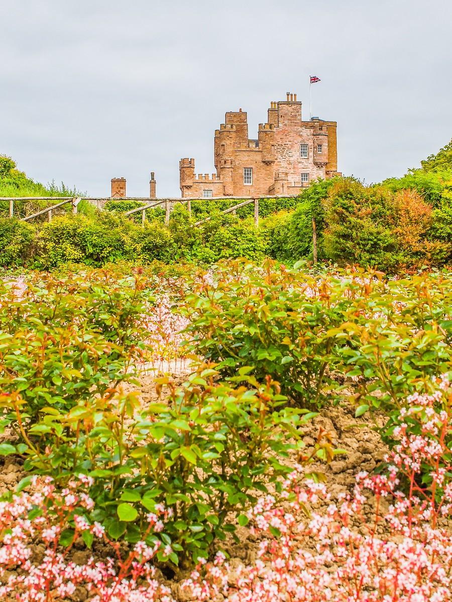 苏格兰梅城堡(Castle of Mey),花园散步_图1-1