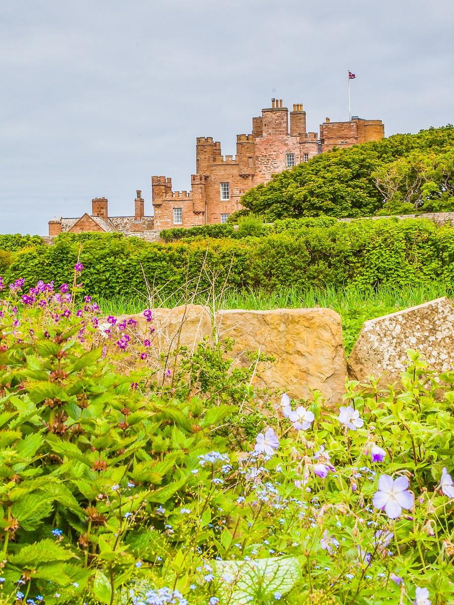 苏格兰梅城堡(Castle of Mey),花园散步_图1-4