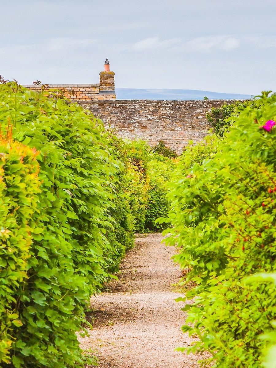 苏格兰梅城堡(Castle of Mey),花园散步_图1-18
