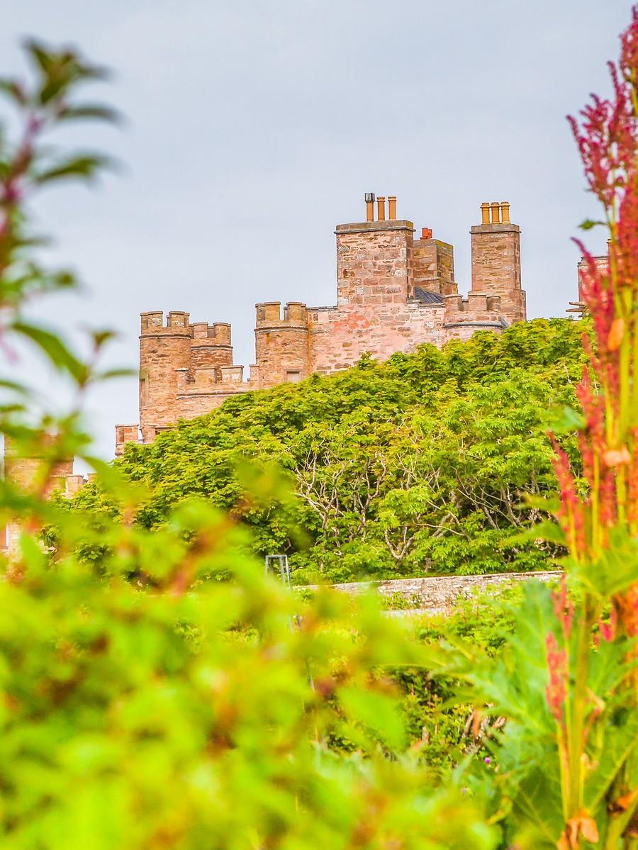 苏格兰梅城堡(Castle of Mey),花园散步_图1-17
