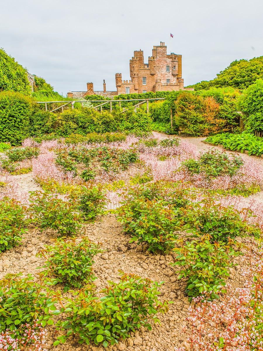 苏格兰梅城堡(Castle of Mey),花园散步_图1-27