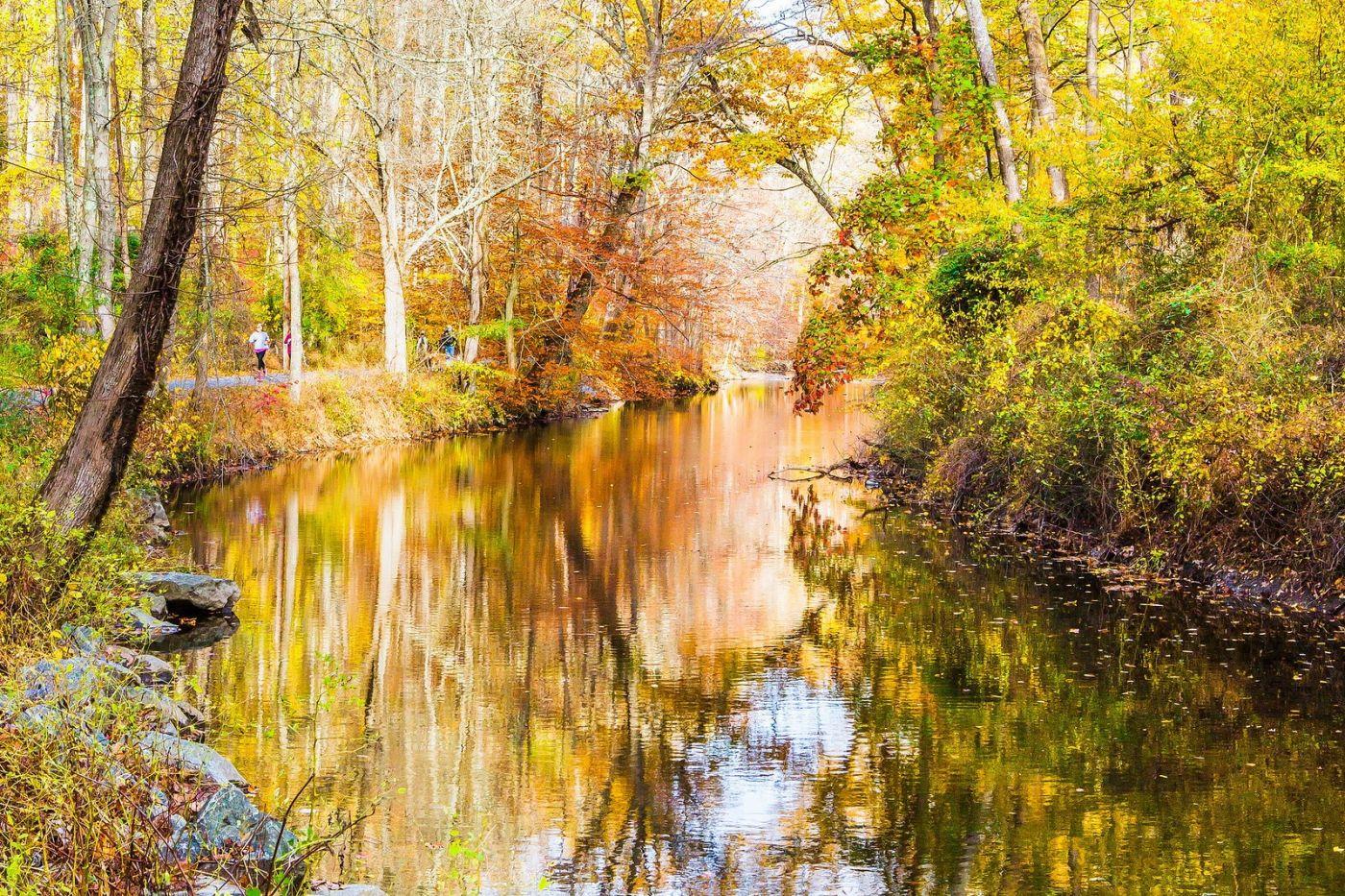 宾州雷德利克里克公园(Ridley creek park),迷人的秋色_图1-25