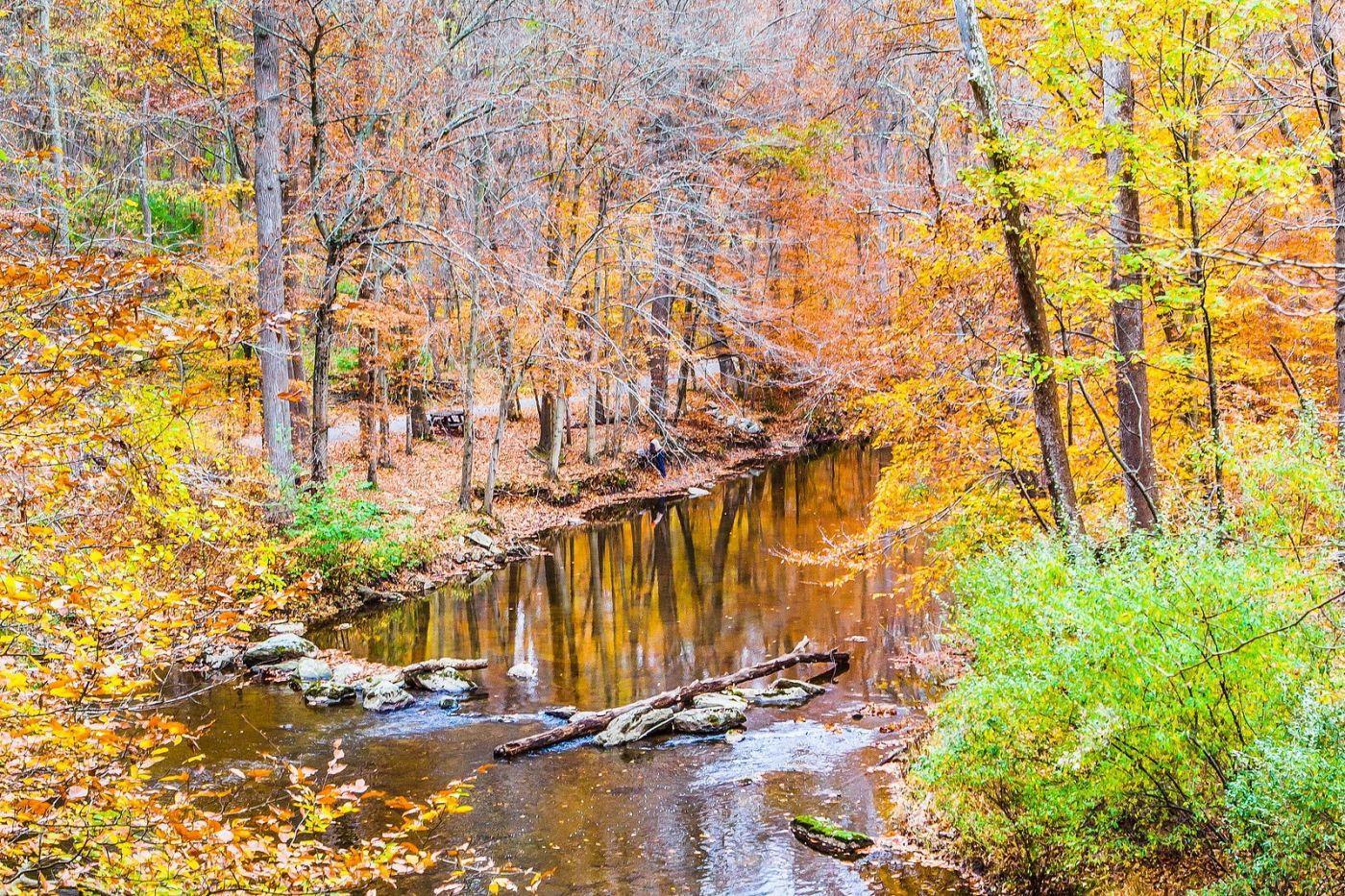 宾州雷德利克里克公园(Ridley creek park),迷人的秋色_图1-28