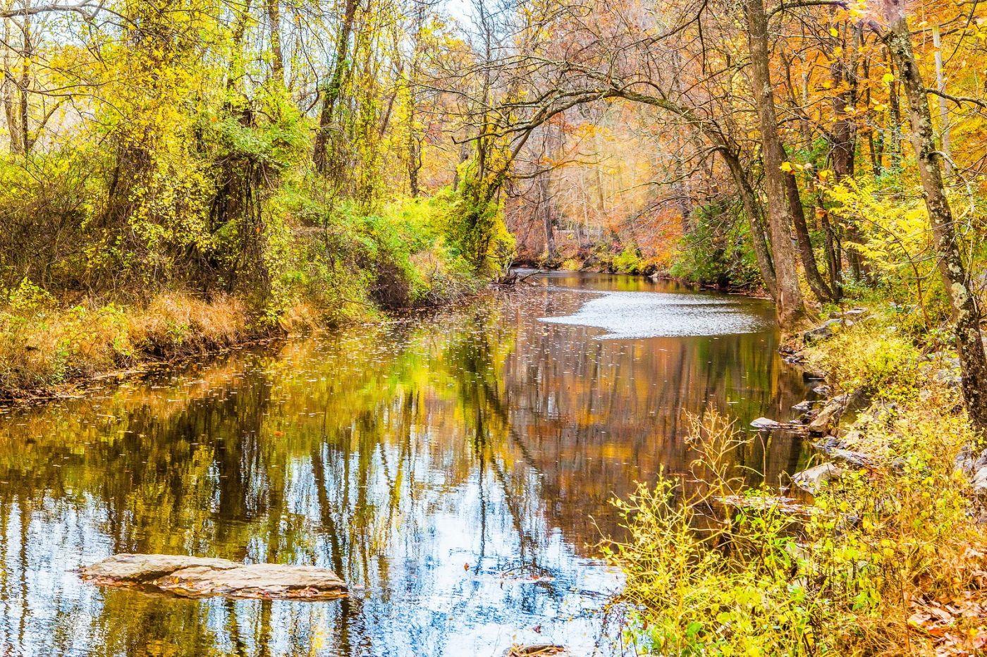 宾州雷德利克里克公园(Ridley creek park),迷人的秋色_图1-23