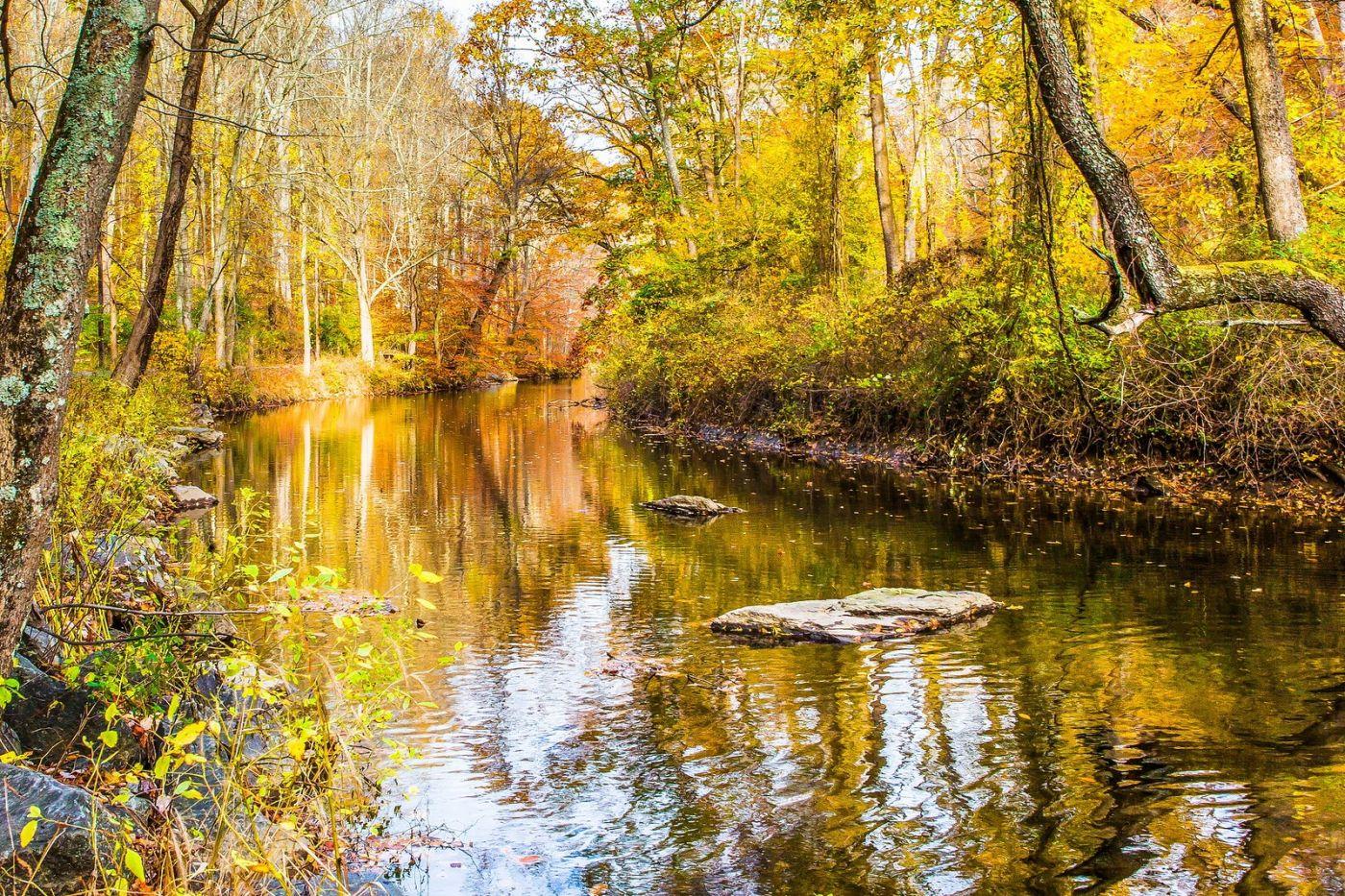 宾州雷德利克里克公园(Ridley creek park),迷人的秋色_图1-21