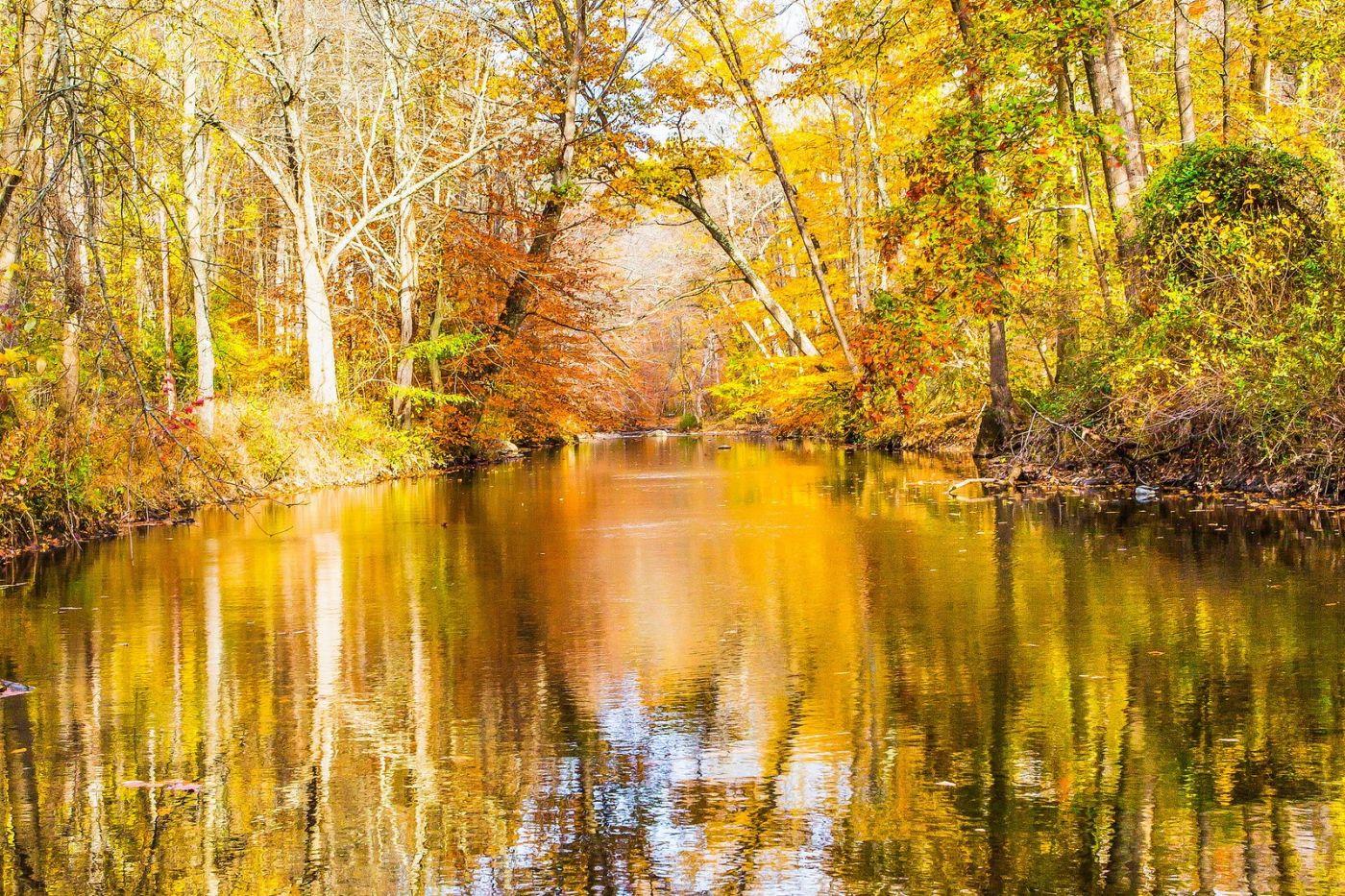 宾州雷德利克里克公园(Ridley creek park),迷人的秋色_图1-14