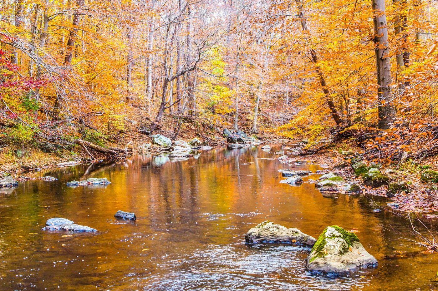 宾州雷德利克里克公园(Ridley creek park),迷人的秋色_图1-10