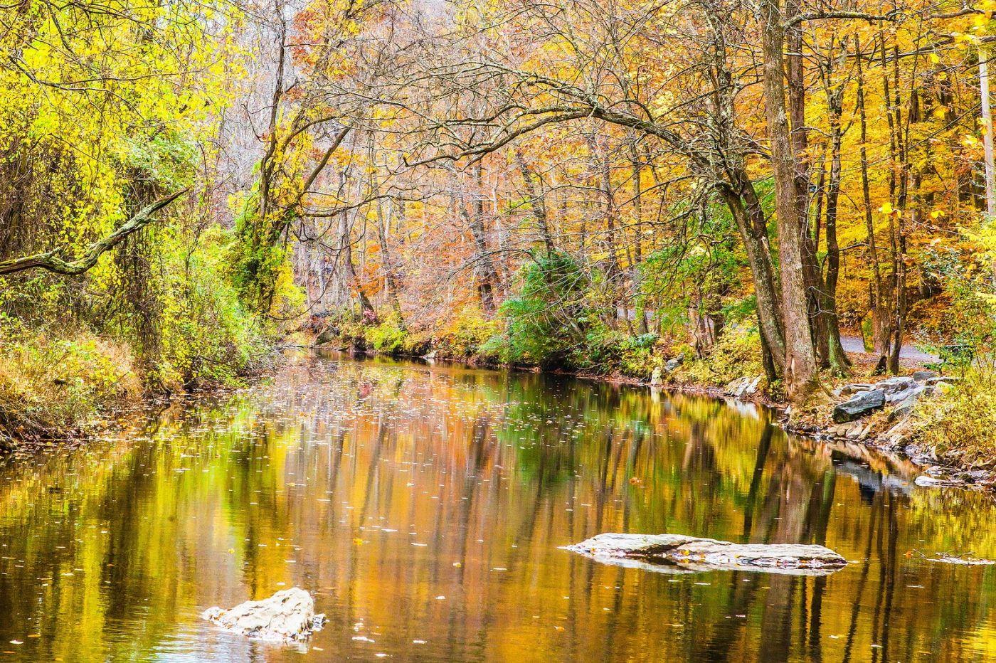 宾州雷德利克里克公园(Ridley creek park),迷人的秋色_图1-12