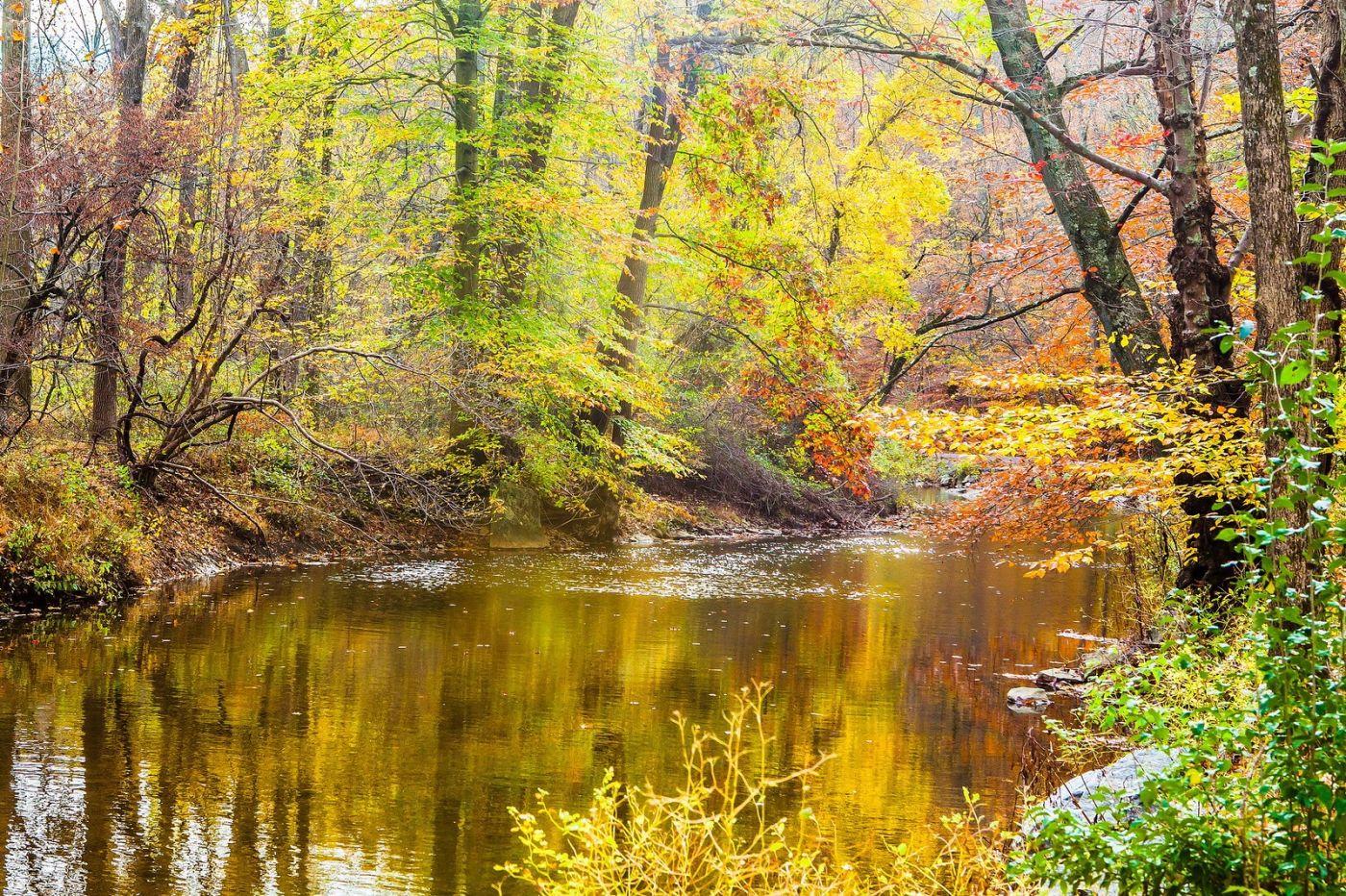 宾州雷德利克里克公园(Ridley creek park),迷人的秋色_图1-7